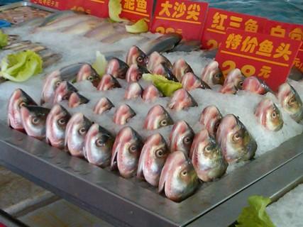 China_Fish Heads